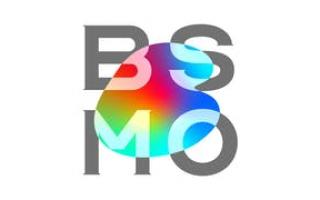 BSMO Co., Ltd.